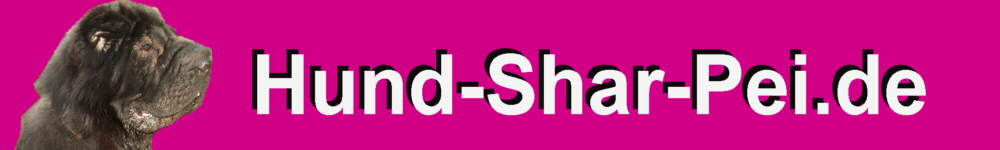 Shar Pei Hunde Informationen Rassebeschreibung Aussehen Charakter